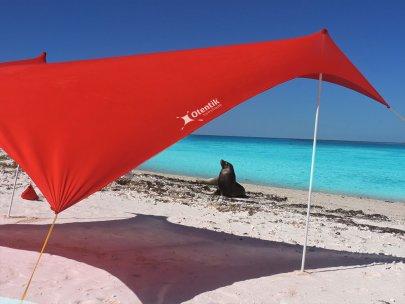 Seal visit otentik sunshade
